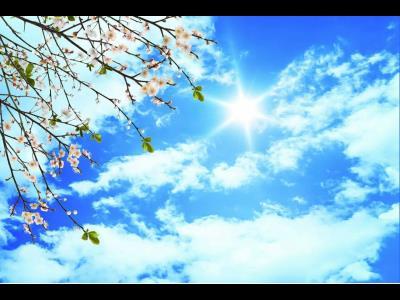 آسمان مجازی و سقف کاذب