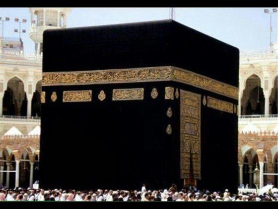 تقل وانتقال  فیش حج و عمره  خریدار فیش حج با بالاترین قیمت بدون  واسط  09354289899 66648831