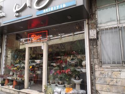 فروشگاه گل آسیا