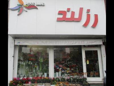 گل فروشی رزلند