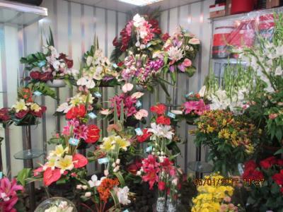 گل فروشی بلومی - گل - شهرک ژاندارمری