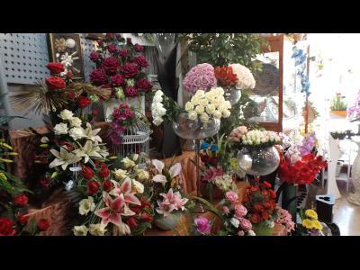 فروشگاه گل بیتا