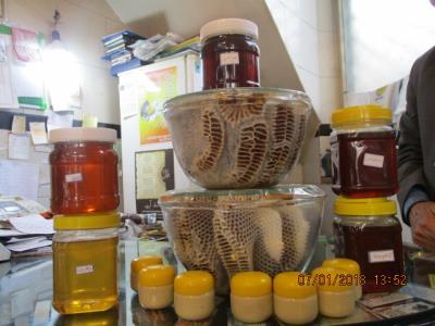 پرورش زنبور عسل البرز