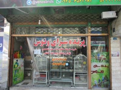 پرنده سرای ونوس - پرنده فروشی - در اسلامشهر