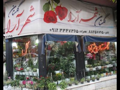 گلستان شهرآرا - گل فروشی - ستارخان