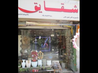 گلسرای گل شقایق - گل فروشی - شهرک ولیعصر - منطقه 18 - تهران
