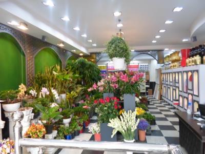 فروشگاه گل دریا - گل فروشی - سعادت آباد - منطقه 2 - تهران
