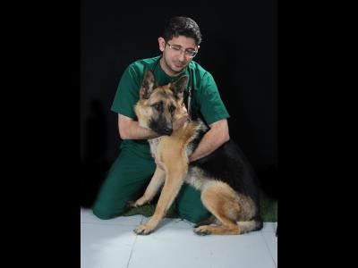 کلینیک دامپزشکی اختصاصی - حیوانات خانگی - پرندگان زینتی آرامیس - دامپزشکی - مشهد