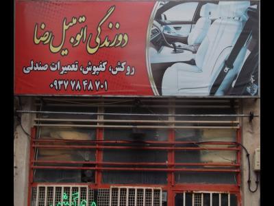 دوزندگی اتومبیل رضا