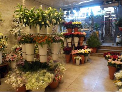 فروشگاه گل پرشیا
