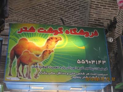 فروشگاه گوشت شتر - قصابی گوشت شتر - گوشت شتر -شهر ری