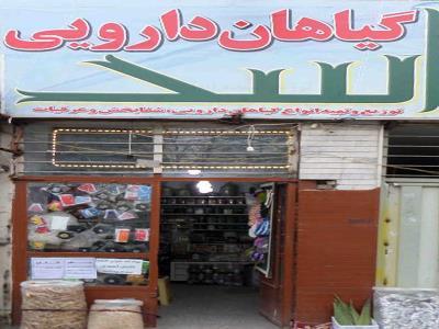 طب سنتی اسد
