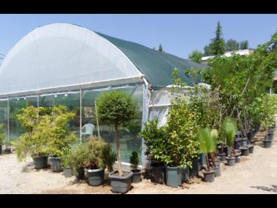 باغ گالری گیارا - نهال - گلفروشی - باغ گل - لواسان - حومه تهران