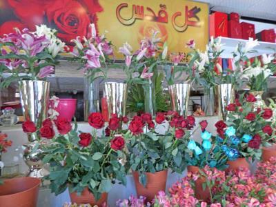 گل سرای قدس - گل فروشی - مشهد - سناباد - بیت زهرة القدس