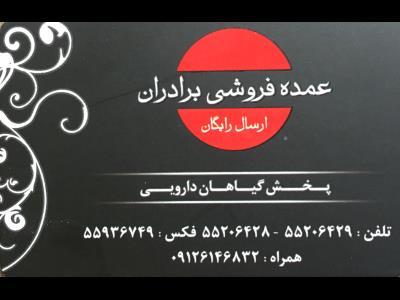 پخش برادران -گیاهان دارویی خ شهید رجایی - عطاری خ شهید رجایی