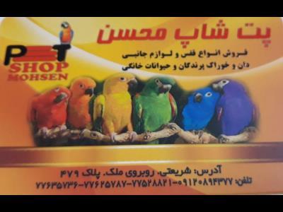 پت شاپ محسن