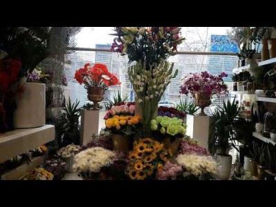 گل شبنم - گل فروشی - منطقه 4 - خیابان فرجام